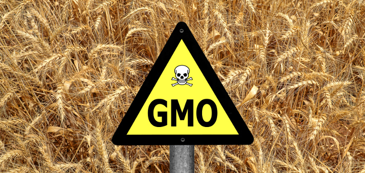 Nationwide Claims Number >> Denied: Lawmakers Fighting to Hide GMO Ingredients ...